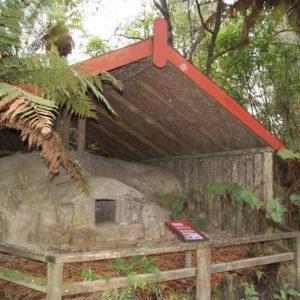 Trip to Buried Village- Te Wairoa