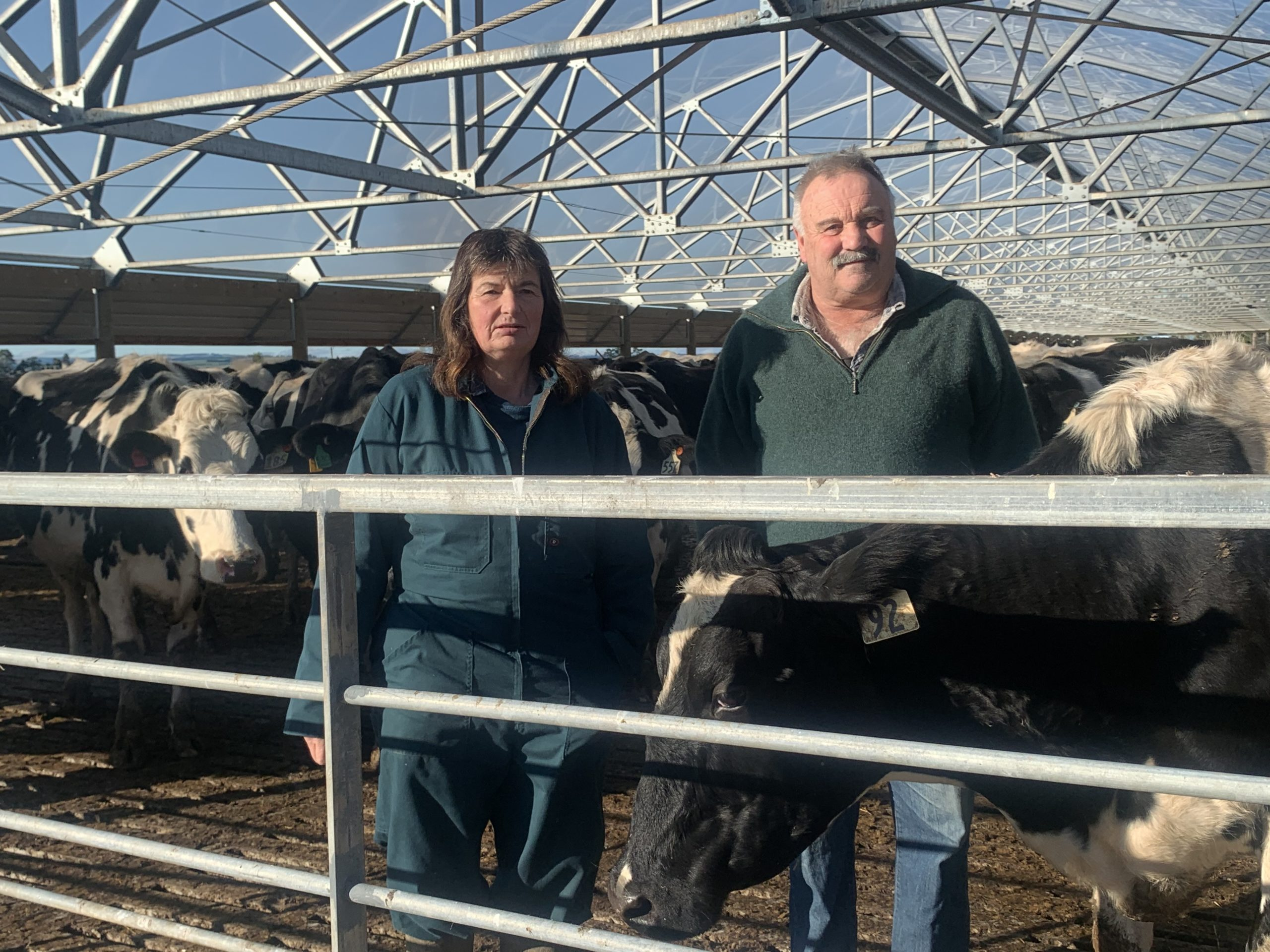 Holstein Friesian breeders Judith and Stephen Ray on their Balclutha farm.