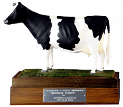 Sherriff Memorial Trophy
